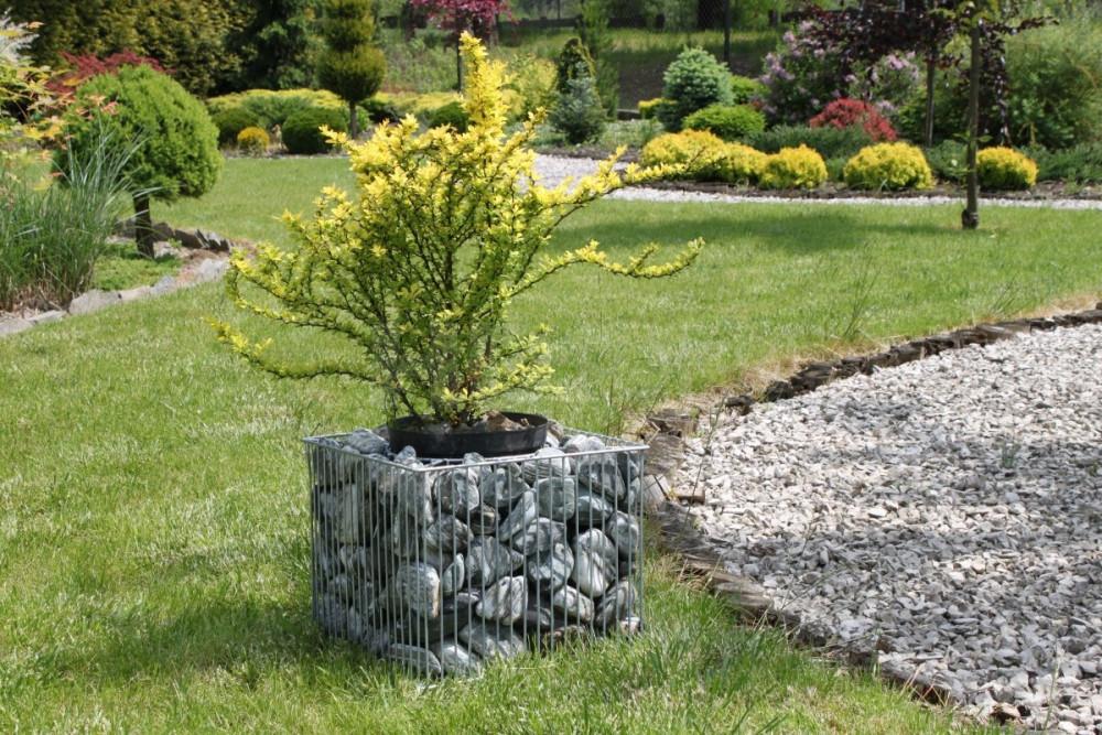 Gabiónový kvetináč štvorec výška 32cm, šířka 39 cm, vnútorná vsadka 25cm