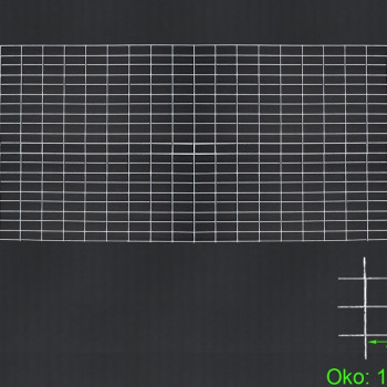 Gabiónová sieť 200x100 cm, oko 10x5 H